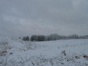 snowy landscape1
